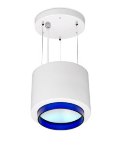 Faculty_LED_Surface_Luminaire_SUS_TA310_Blue_1