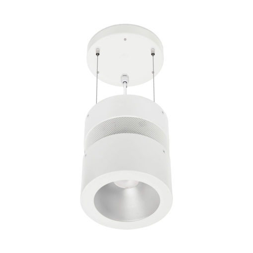 Harpoon LED Suspended Luminaire_WWW_1