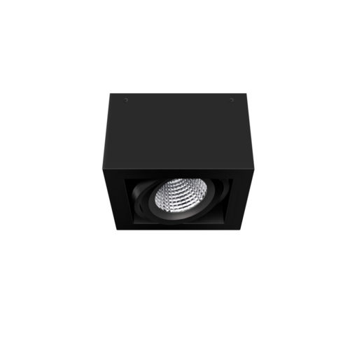 Scout LED Surface Mounted Luminaire_BK_Angled