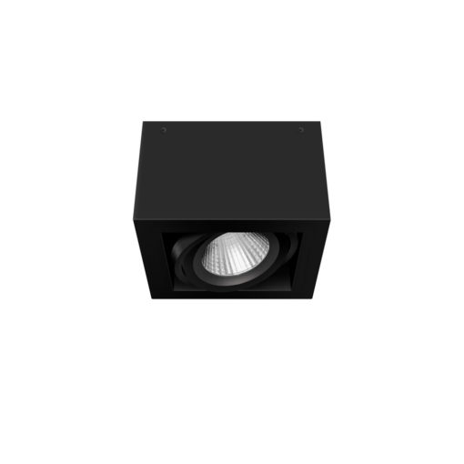 Scout LED Surface Mounted Luminaire_BK_NB_Angled