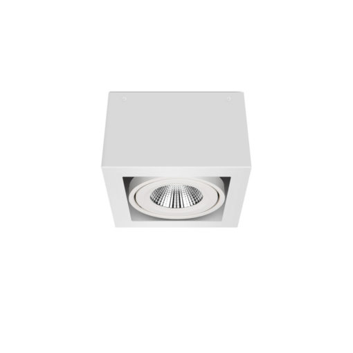 Scout LED Surface Mounted Luminaire_WB_Ambient