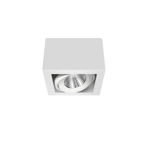 Scout LED Surface Mounted Luminaire_WB_Angled