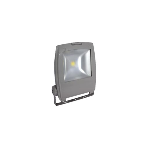 Thor LED Floodlight 50W